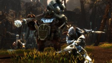 Immagine -4 del gioco Kingdoms of Amalur: Re-Reckoning per Xbox One