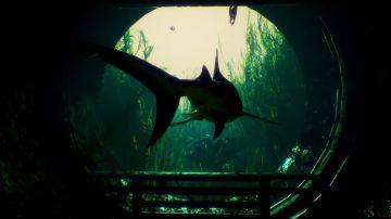 Immagine -4 del gioco Maneater per PlayStation 4