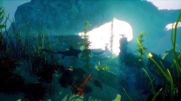 Immagine -2 del gioco Maneater per PlayStation 4