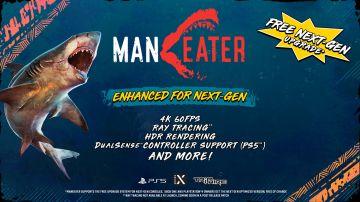 Immagine -2 del gioco Maneater per PlayStation 5