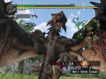 Immagine -9 del gioco Monster Hunter per PlayStation 2