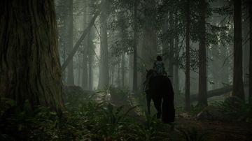 Immagine -3 del gioco Shadow Of The Colossus per PlayStation 4