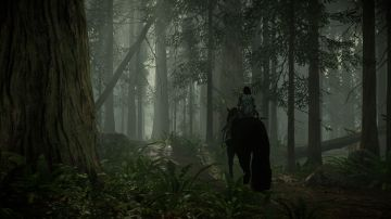 Immagine 0 del gioco Shadow Of The Colossus per PlayStation 4