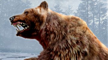 Immagine -5 del gioco Cabela's Dangerous Hunts 2011 per PlayStation 3