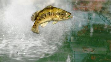 Immagine -3 del gioco Rapala Pro Bass Fishing per Nintendo Wii