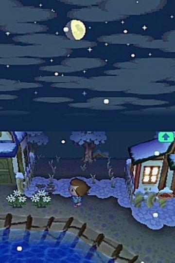 Immagine -5 del gioco Animal Crossing: Wild World per Nintendo DS