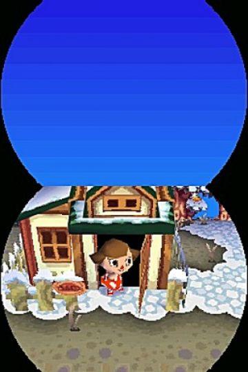 Immagine -4 del gioco Animal Crossing: Wild World per Nintendo DS