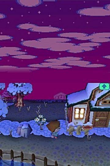 Immagine -1 del gioco Animal Crossing: Wild World per Nintendo DS