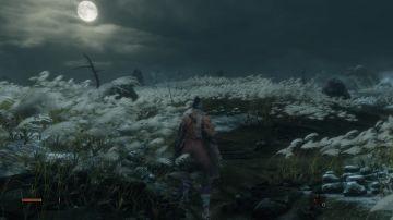 Immagine -11 del gioco Sekiro: Shadows Die Twice per PlayStation 4