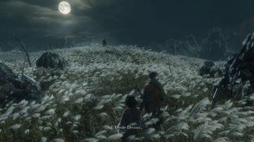 Immagine -10 del gioco Sekiro: Shadows Die Twice per PlayStation 4