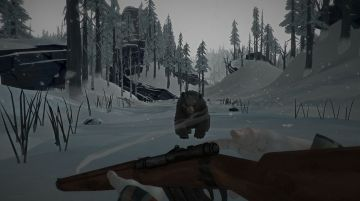 Immagine -4 del gioco The Long Dark per PlayStation 4
