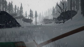 Immagine -3 del gioco The Long Dark per PlayStation 4