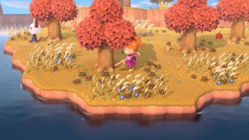 Immagine -3 del gioco Animal Crossing : New Horizons per Nintendo Switch